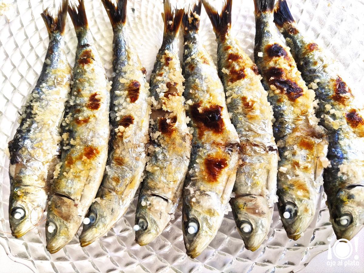 12_sardinas_oasis