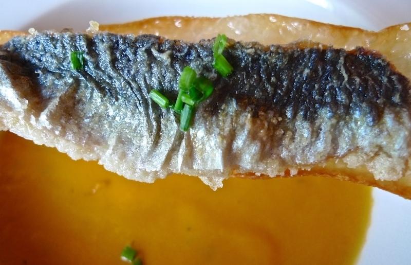 06_sardina
