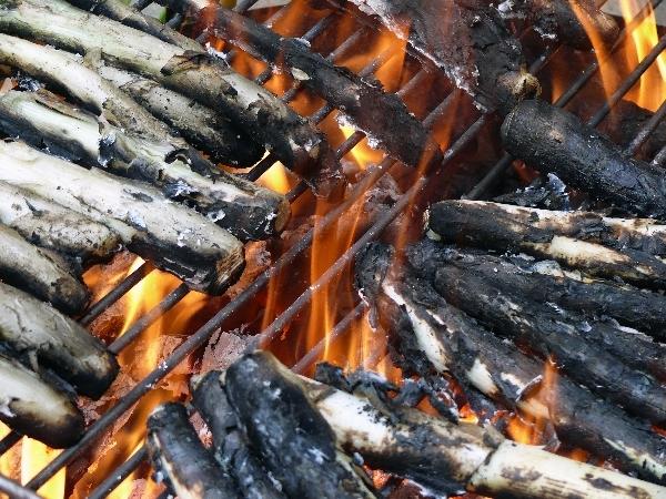 en-el-fuego