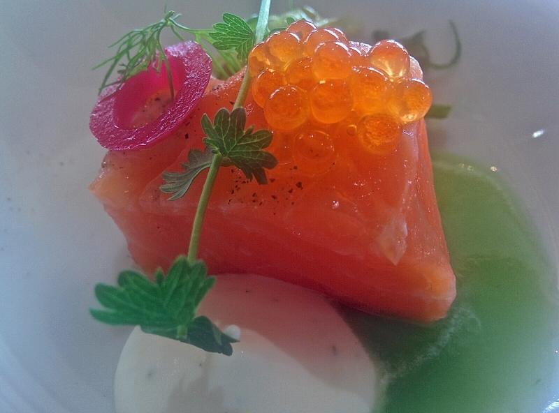 10_salmon