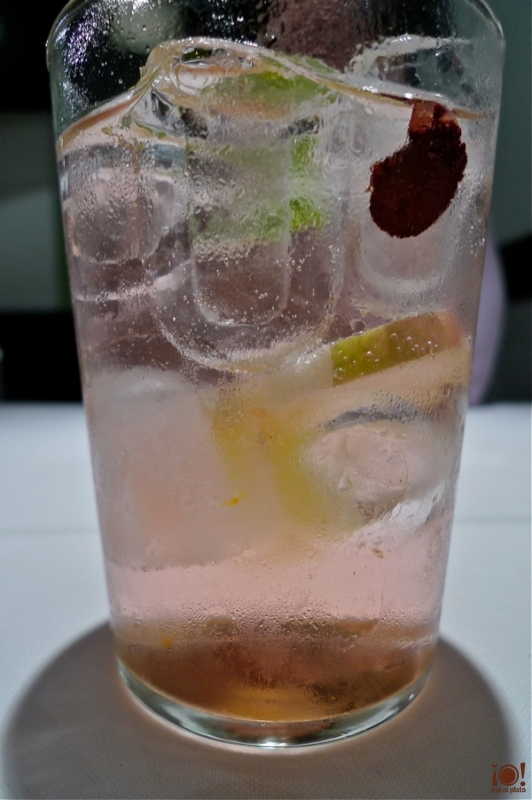 copia-gin-tonic